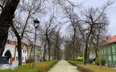 Lokacja na surowym korzeniu – Rawicz